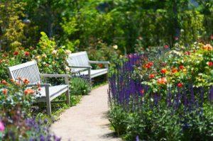 花の多い公園