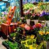 お花が好きな人に合った仕事、花屋で独立開業、副業を考える